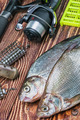 caught fish and fishing tackle on a wooden table - PhotoDune Item for Sale