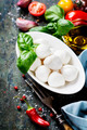 Mozzarella with tomatos and basil leaves - PhotoDune Item for Sale