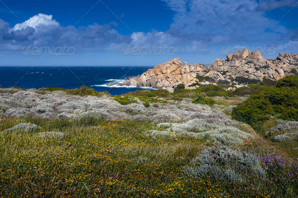 Santa Teresa di Gallura-Sardinia-Italy - Stock Photo - Images