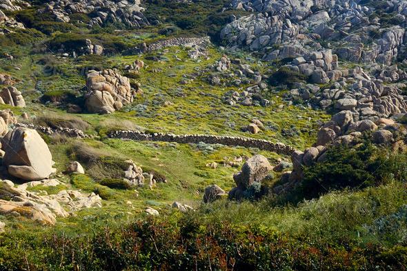 Santa Teresa di Gallura-Sardinia-Italy - Stock Photo - Images