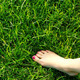 Bare feet on green grass - PhotoDune Item for Sale