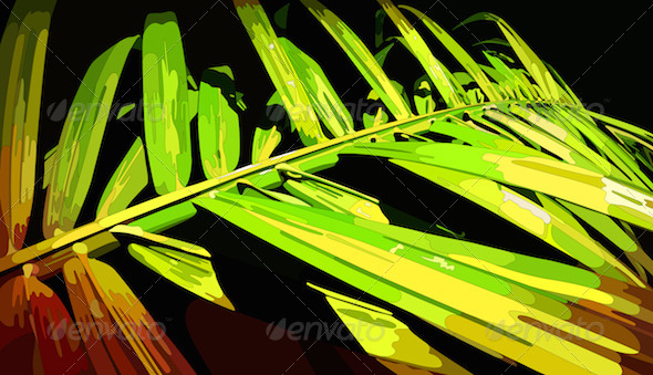 GraphicRiver Palm Leaf 8282601