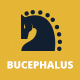 Bucephalus One Page Parallax Responsive Theme - ThemeForest Item for Sale