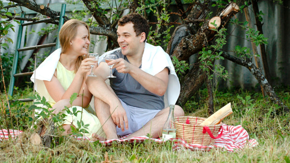 Young Couple On Picnic Drinking Wine And Talking