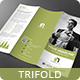 Simple Clean Trifold - GraphicRiver Item for Sale