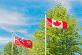 Canadian and Ontario flag, trees and sky at the background. - PhotoDune Item for Sale