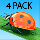 Ladybug on a Grass - 4 Pack - VideoHive Item for Sale