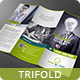 Business Multipurpose Trifold - GraphicRiver Item for Sale