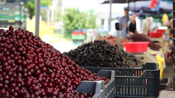 Bunch of Cherries at Market