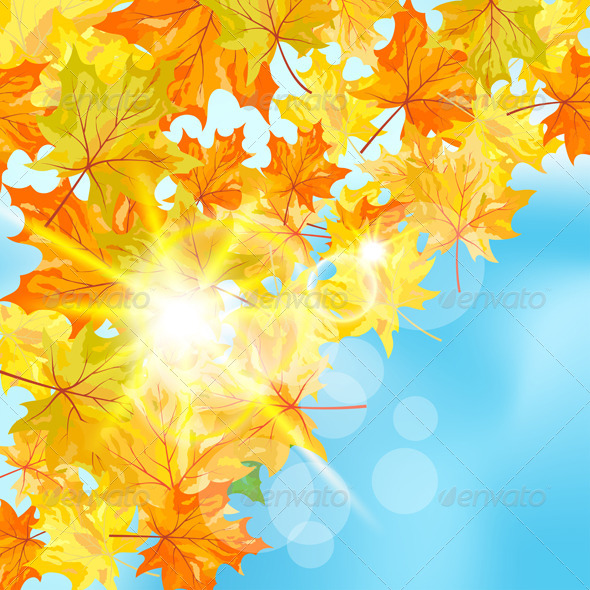 GraphicRiver Autumn Maple Leaves 8295702