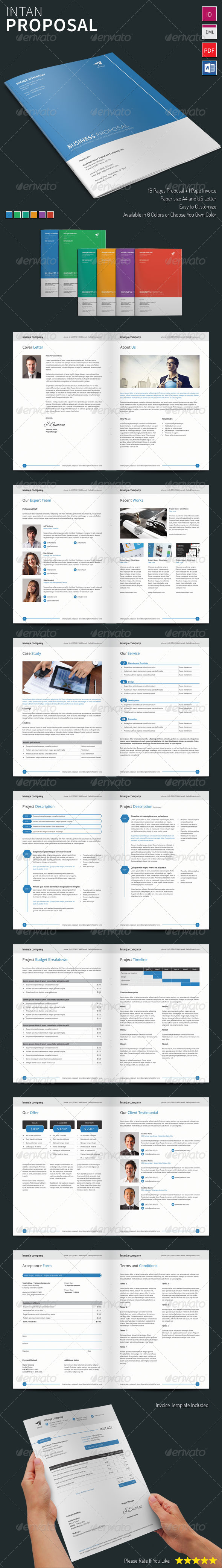 GraphicRiver Intan Proposal Template 8253783
