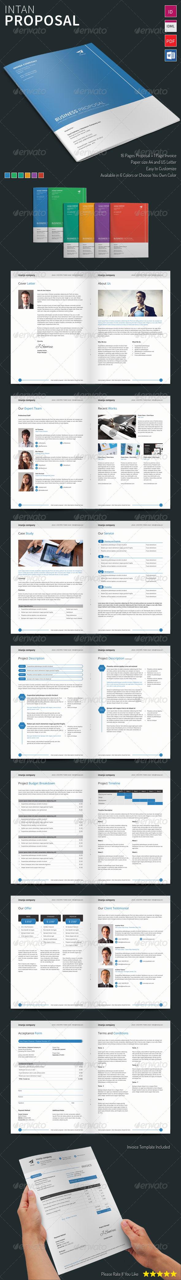 GraphicRiver Intan Proposal Template 8253783