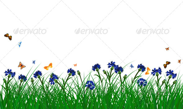 GraphicRiver Cornflowers on Summer Meadow 8296173