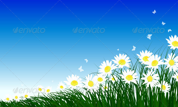 GraphicRiver Chamomiles on Summer Background 8296183