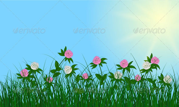 GraphicRiver Clovers on Summer Background 8296190