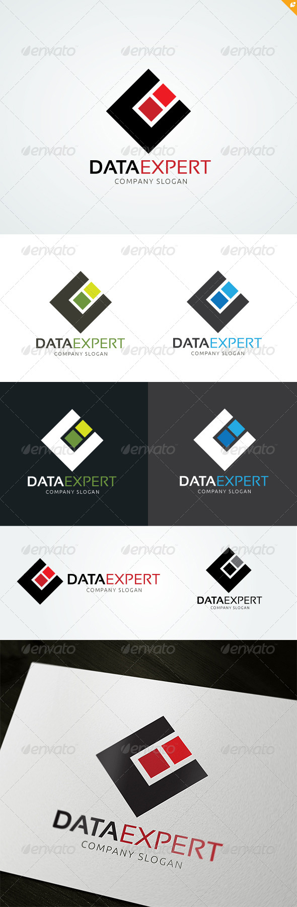 GraphicRiver Data Expert 8296700