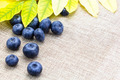 Fresh ripe blueberries with leaves on linen cloth - PhotoDune Item for Sale