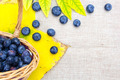 Fresh ripe blueberries in wicker basket on sack cloth - PhotoDune Item for Sale
