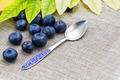 Fresh ripe blueberries with leaves,spoon on linen cloth - PhotoDune Item for Sale