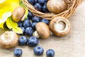 Blueberries and mushrooms in basket on linen cloth - PhotoDune Item for Sale