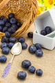 Fresh ripe blueberries harvest in wicker basket - PhotoDune Item for Sale