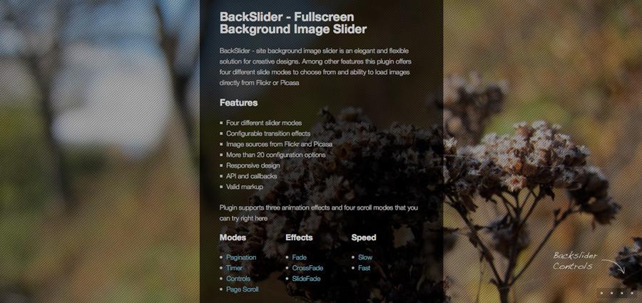 Backslider - Fullscreen Background Image Slider - Pagination mode