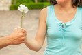 Man Hand Giving Rose To A Woman - PhotoDune Item for Sale