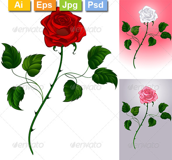 GraphicRiver Roses 8320036