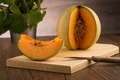 Honeydew melon - PhotoDune Item for Sale