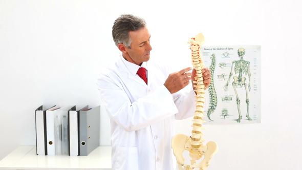 Doctor Pointing To Skeleton Model