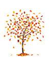 Autumn tree - PhotoDune Item for Sale