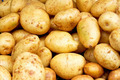 Yellow potatoes - PhotoDune Item for Sale