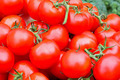 Organic tomatoes - PhotoDune Item for Sale