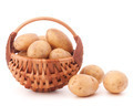 Potato tuber  in wicker basket isolated on white background - PhotoDune Item for Sale