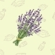 Seamless Pattern with a Bouquet of Lavender - GraphicRiver Item for Sale