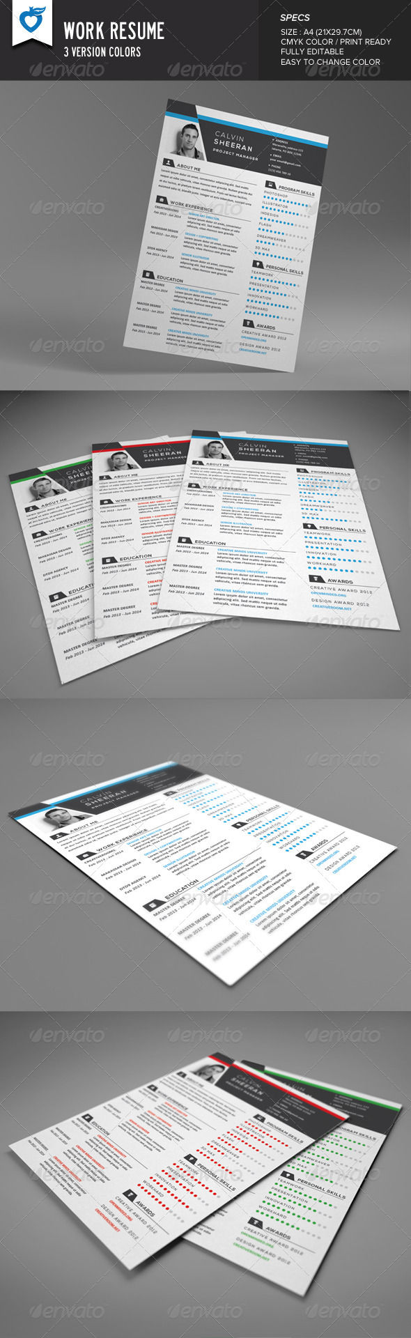 GraphicRiver Work Resume 8329860