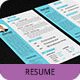 Professional Resume Template SN-2 - GraphicRiver Item for Sale