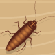 Cockroach Killer - ActiveDen Item for Sale