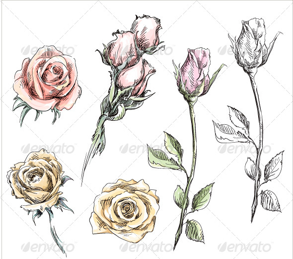 GraphicRiver Set of Hand Drawn Roses 8338587