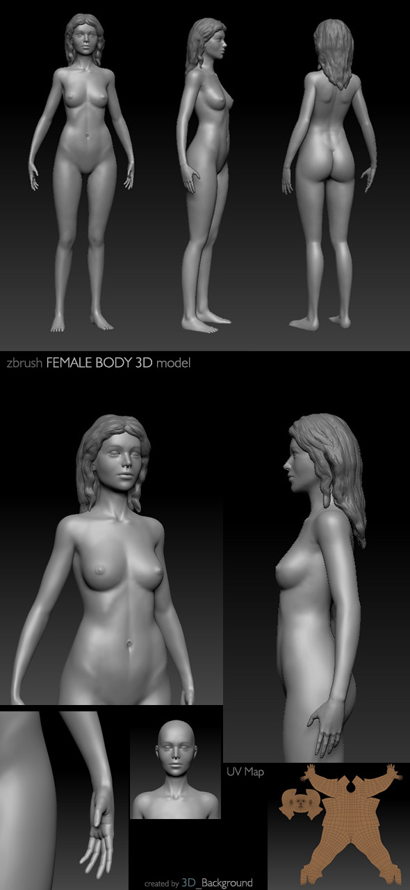 Female Body 3D Model - 3DOcean Item for Sale