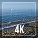 Beach And Calm Sea - VideoHive Item for Sale