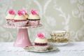 Afternoon tea with rose cupcakes - PhotoDune Item for Sale