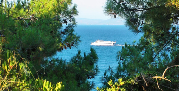 The Ship and Pine Trees