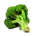 Broccoli on white background - PhotoDune Item for Sale
