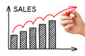 Sales Growth Graph - PhotoDune Item for Sale