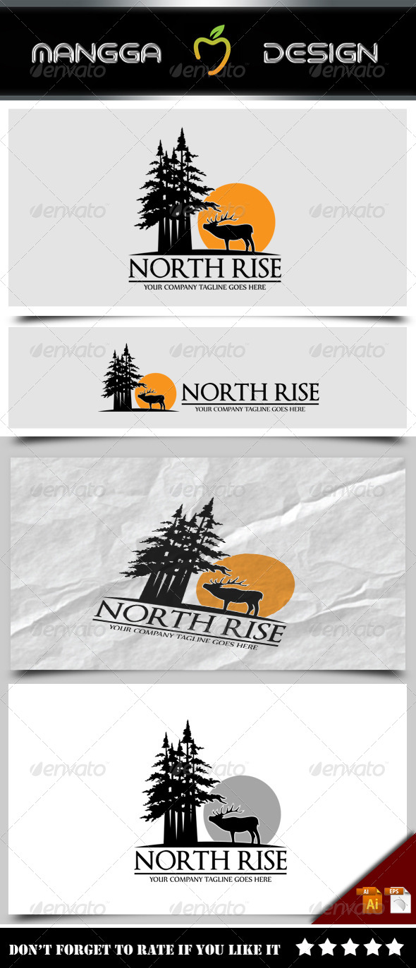 GraphicRiver North Rise Logo 8357794