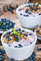 Fresh made Blueberry Yogurt - PhotoDune Item for Sale