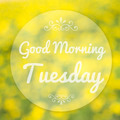 Good Morning Tuesday on blur background - PhotoDune Item for Sale