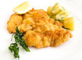 veal cutlet and lemon, austrian cuisine - PhotoDune Item for Sale
