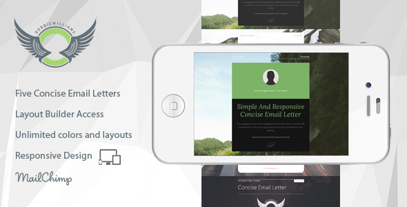 ThemeForest Inform Five Concise Email Letters With Builder 8315769